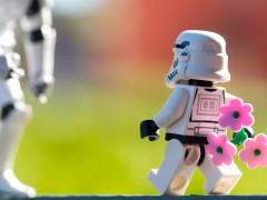 Kleiner Storm Trooper bringt Blumen als Geschenk mit