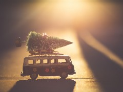 Kleiner Tannenbaum, festgezurrt auf einem Spielzeug-Bus