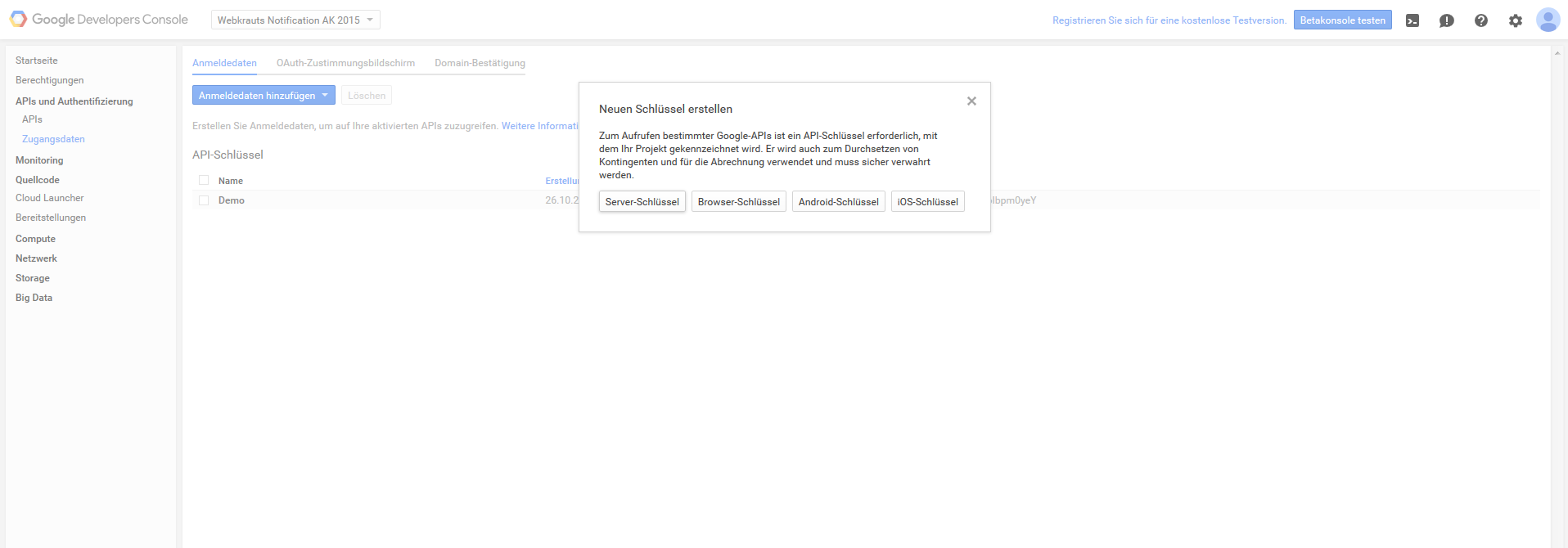 Ein Screenshot der Developer-Konsole von Google während der Erstellung eines API-Schlüssels.
